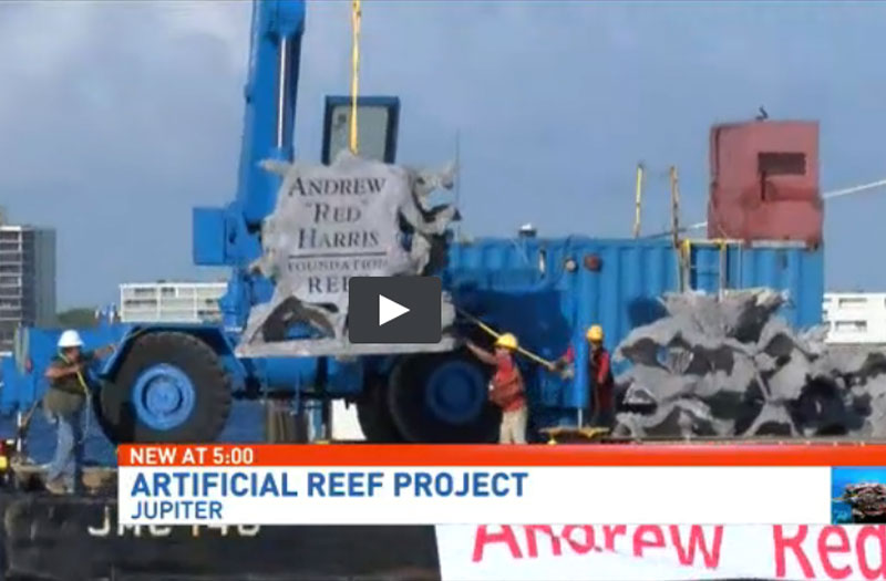 CBS 12-NEWS Reef Cells